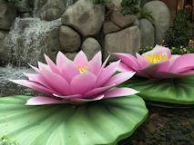 ベラージオ室内植物園