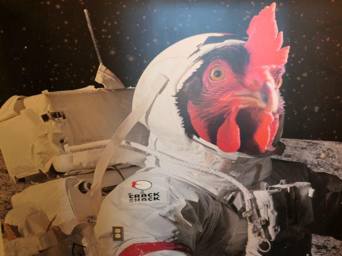 この店の壁に飾られている、宇宙飛行士とニワトリを合体させた珍妙なアート