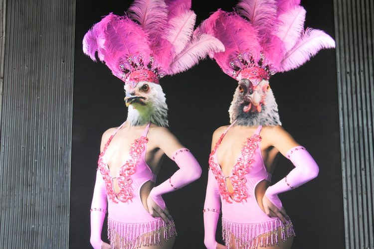 この店の店内の壁に飾られているラスベガスのショーガールに扮したニワトリ