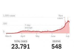 ネバダ州の日々の新型コロナ新規感染者数の推移。TOTAL CASES は通算の感染者数、DEATHS は通算の死者数。(NY Times より)