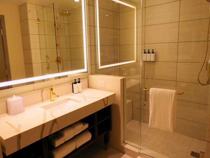 写真の左手前が洗面台、右側がシャワールーム。